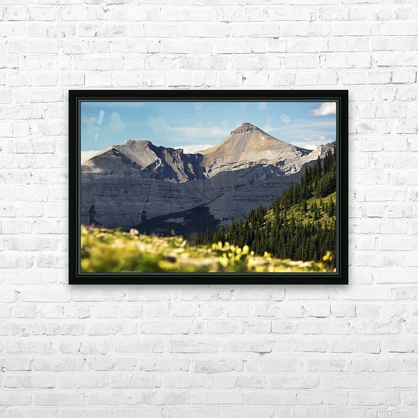 Mountain range with wildflowers on hillside in the foreground and blue sky; Bragg Creek, Alberta, Canada HD Sublimation Metal print with Decorating Float Frame (BOX)
