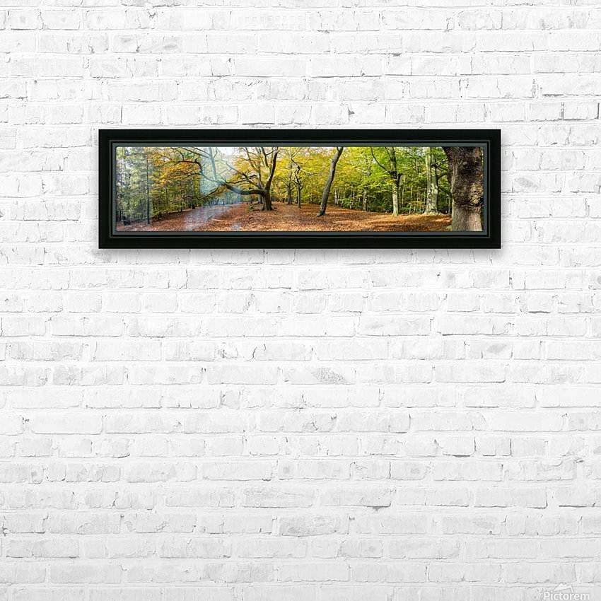 Panorama of a forest in autumn colours; Surrey, England HD Sublimation Metal print with Decorating Float Frame (BOX)