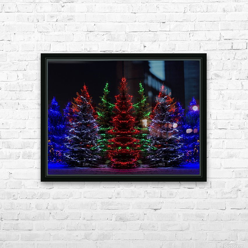Colourful Christmas lights around several evergreen trees; Calgary, Alberta, Canada HD Sublimation Metal print with Decorating Float Frame (BOX)