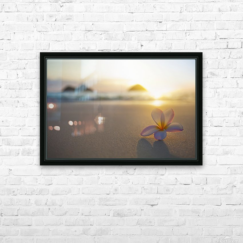A pink plumeria flower sits on the sand of Lanikai Beach in Kailua with a view of Mokulua twin islands and the ocean at sunset in the distance; Kailua, Oahu, Hawaii, United States of America HD Sublimation Metal print with Decorating Float Frame (BOX)