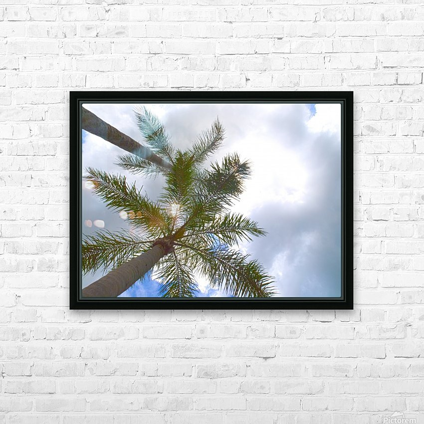 HDR Palm trees looking up against a cloudy sky HD Sublimation Metal print with Decorating Float Frame (BOX)