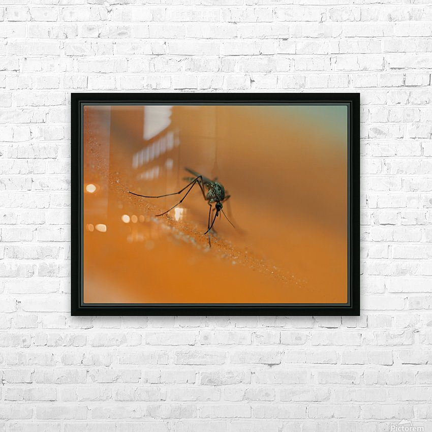 Mosquito! HD Sublimation Metal print with Decorating Float Frame (BOX)