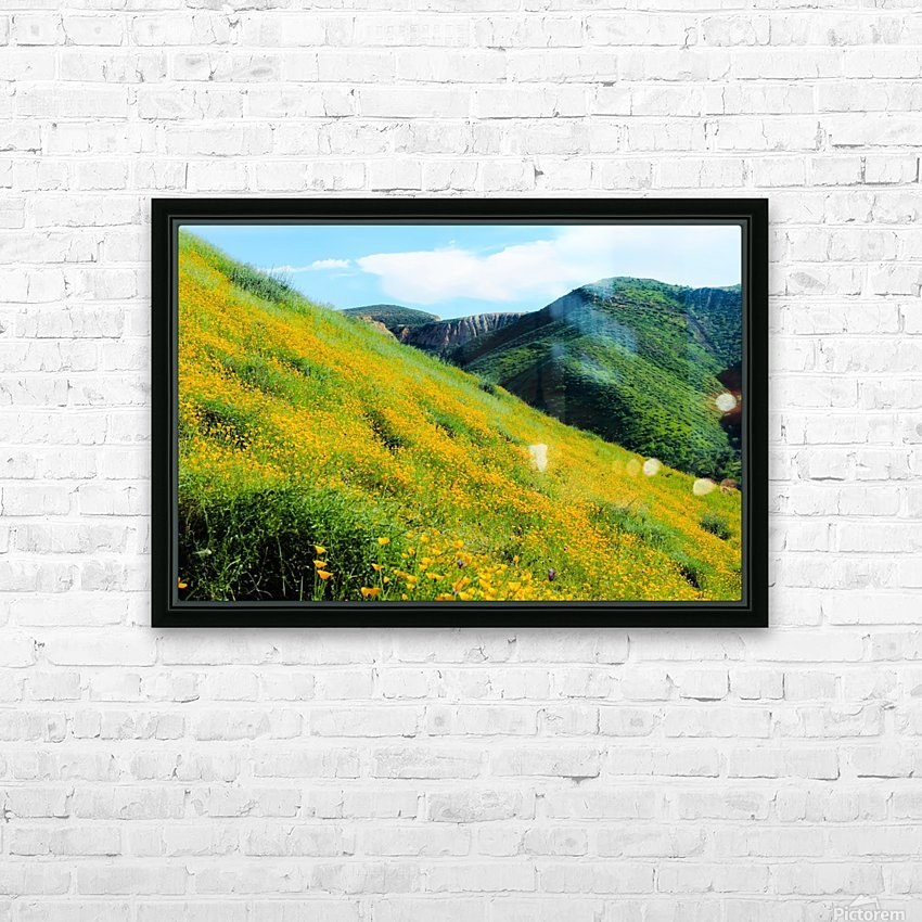 yellow poppy flower field with green leaf and green mountain and cloudy blue sky in summer HD Sublimation Metal print with Decorating Float Frame (BOX)
