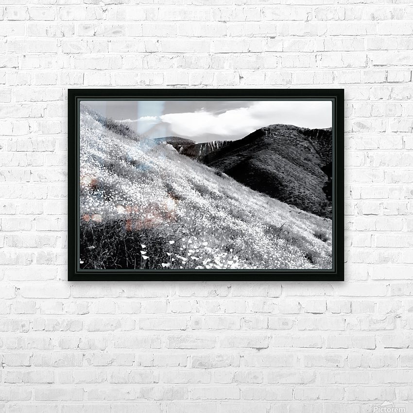 poppy flower field with mountain and cloudy sky background in black and white HD Sublimation Metal print with Decorating Float Frame (BOX)