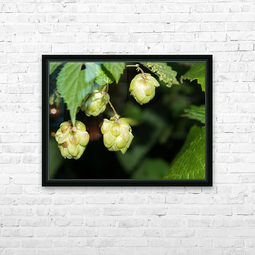 Hop cones HD Sublimation Metal print with Decorating Float Frame (BOX)