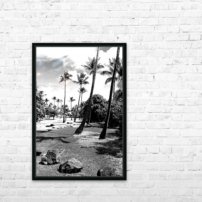 palm tree with cloudy sky in black and white HD Sublimation Metal print with Decorating Float Frame (BOX)