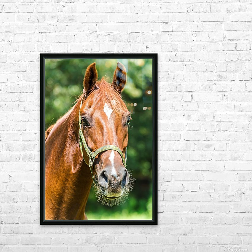 Double Vision  HD Sublimation Metal print with Decorating Float Frame (BOX)