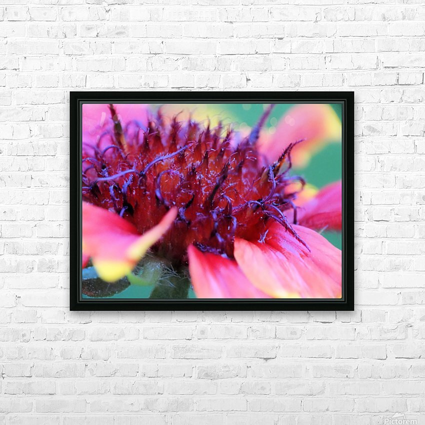 Sun Flower Macro HD Sublimation Metal print with Decorating Float Frame (BOX)