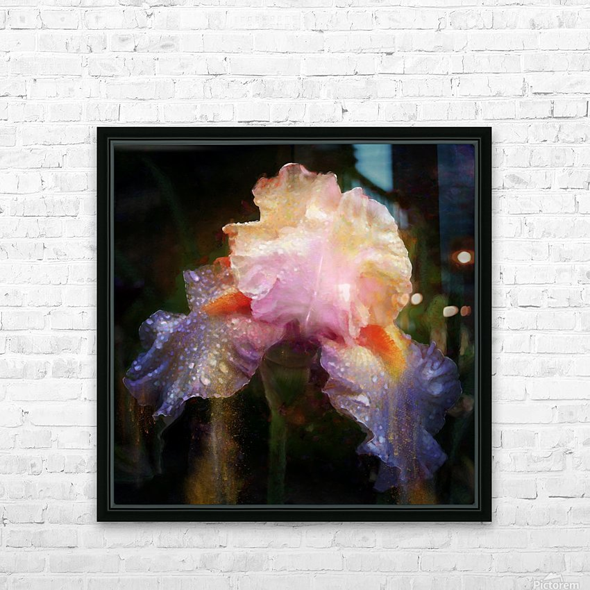 Enchanted Iris   HD Sublimation Metal print with Decorating Float Frame (BOX)
