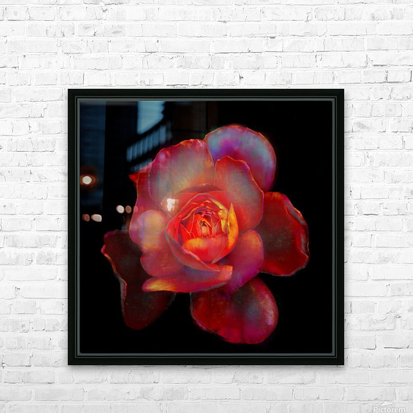 Gilded Rose HD Sublimation Metal print with Decorating Float Frame (BOX)