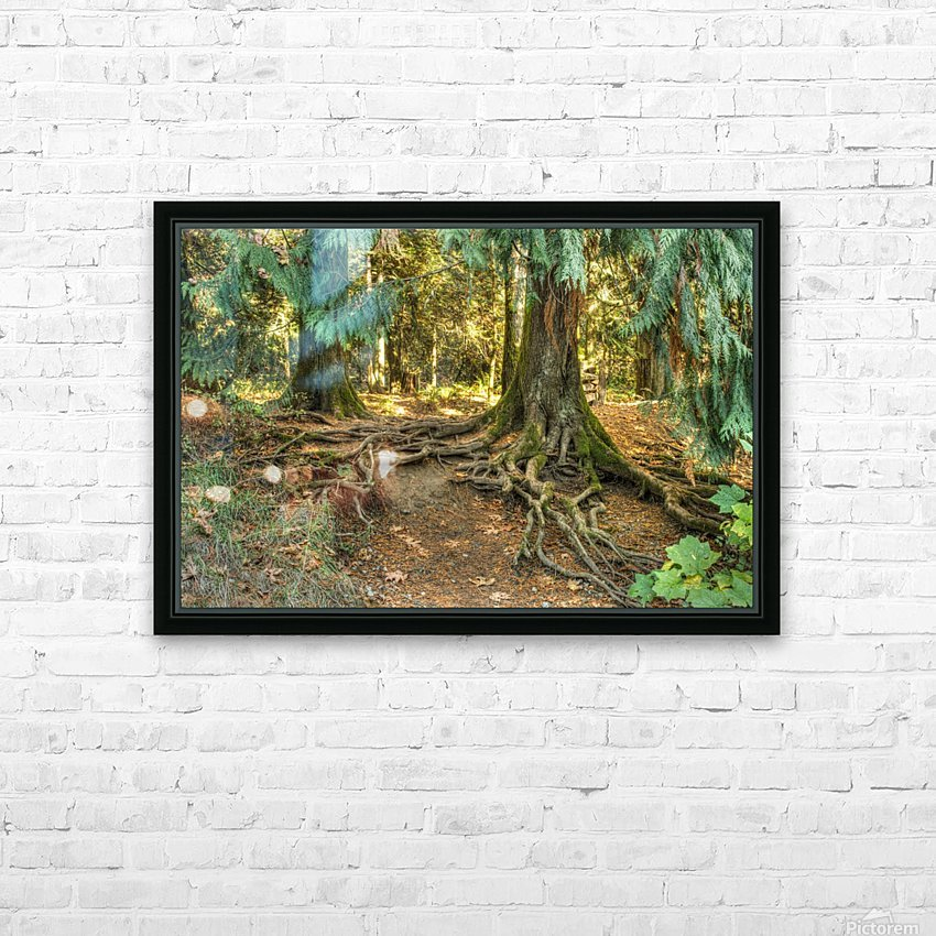 Roots  HD Sublimation Metal print with Decorating Float Frame (BOX)