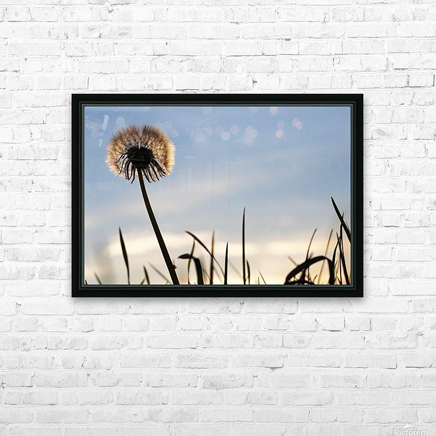 Dandelion HD sublimation métal imprimé avec décoration flotteur cadre (boîte)