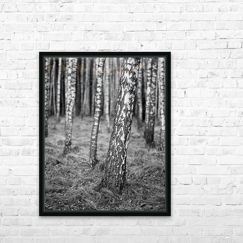 The Birches HD Sublimation Metal print with Decorating Float Frame (BOX)