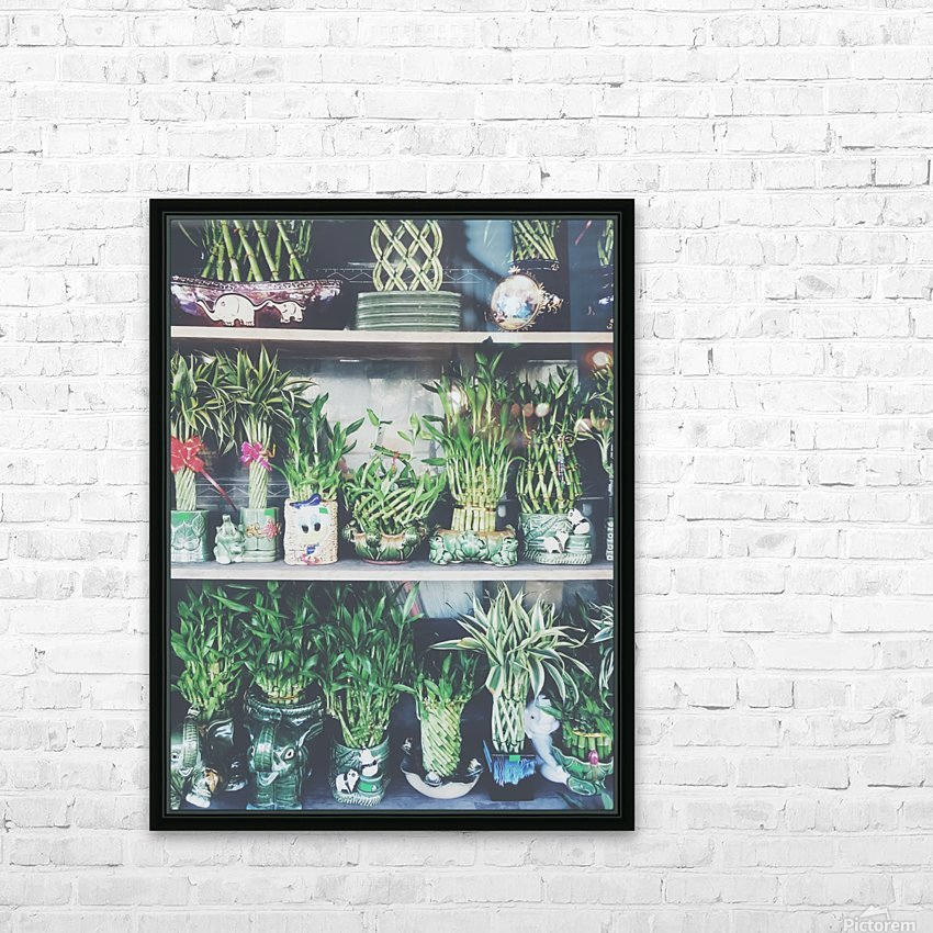 green bamboo plant in the vase pattern background HD Sublimation Metal print with Decorating Float Frame (BOX)