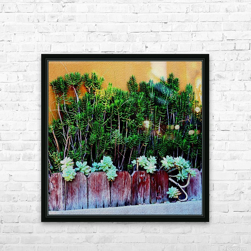 Wall of Succulents HD Sublimation Metal print with Decorating Float Frame (BOX)