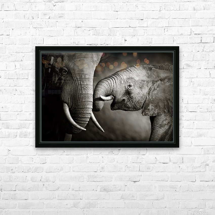 Elephant affection HD Sublimation Metal print with Decorating Float Frame (BOX)