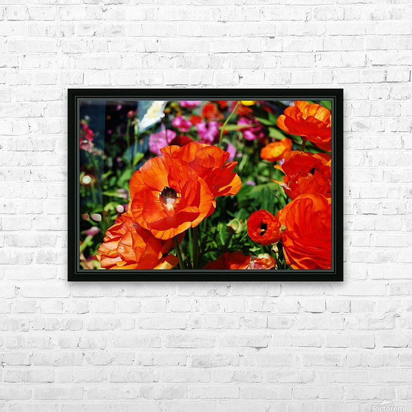 Garden with Orange Flowers Growing HD Sublimation Metal print with Decorating Float Frame (BOX)