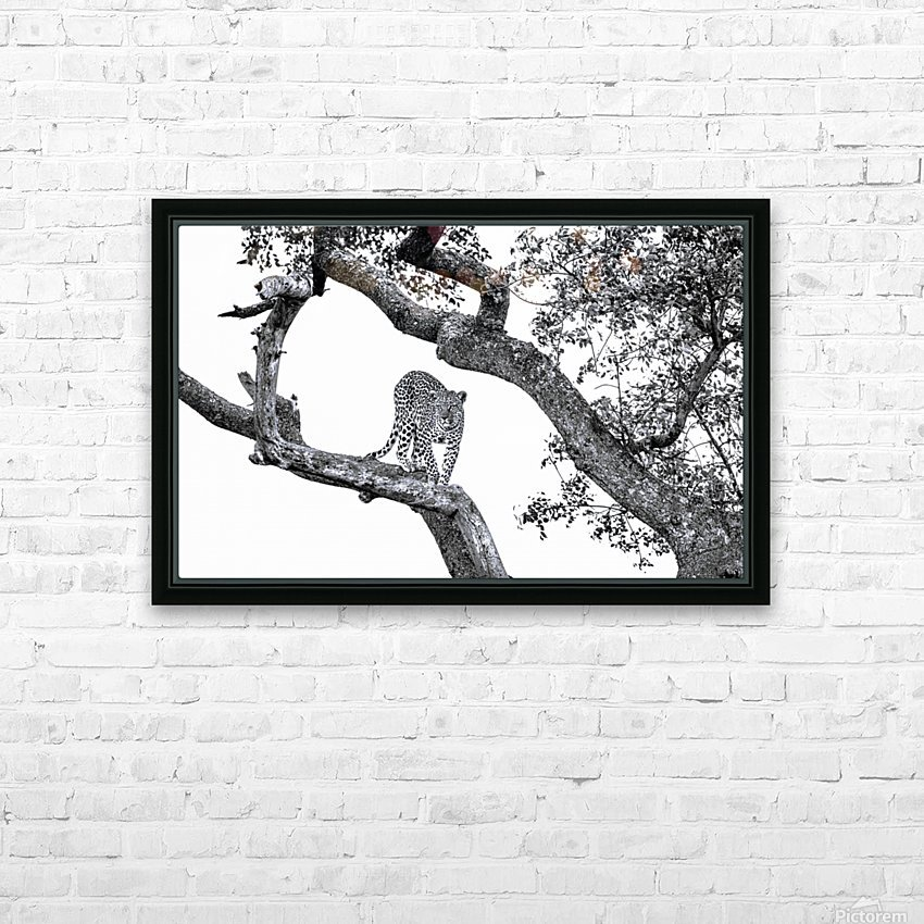 SPOTTED HD Sublimation Metal print with Decorating Float Frame (BOX)