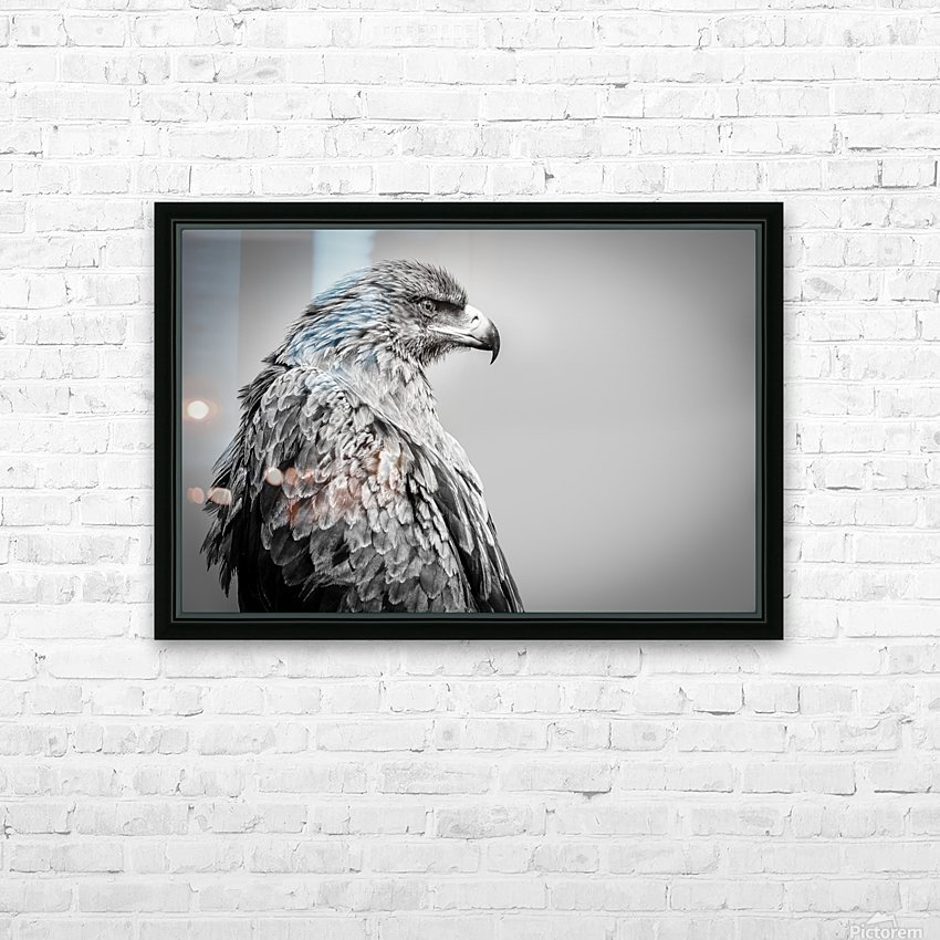 EAGLE EYE HD Sublimation Metal print with Decorating Float Frame (BOX)