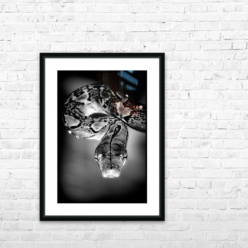 Thailand  Snake Surprise HD Sublimation Metal print with Decorating Float Frame (BOX)