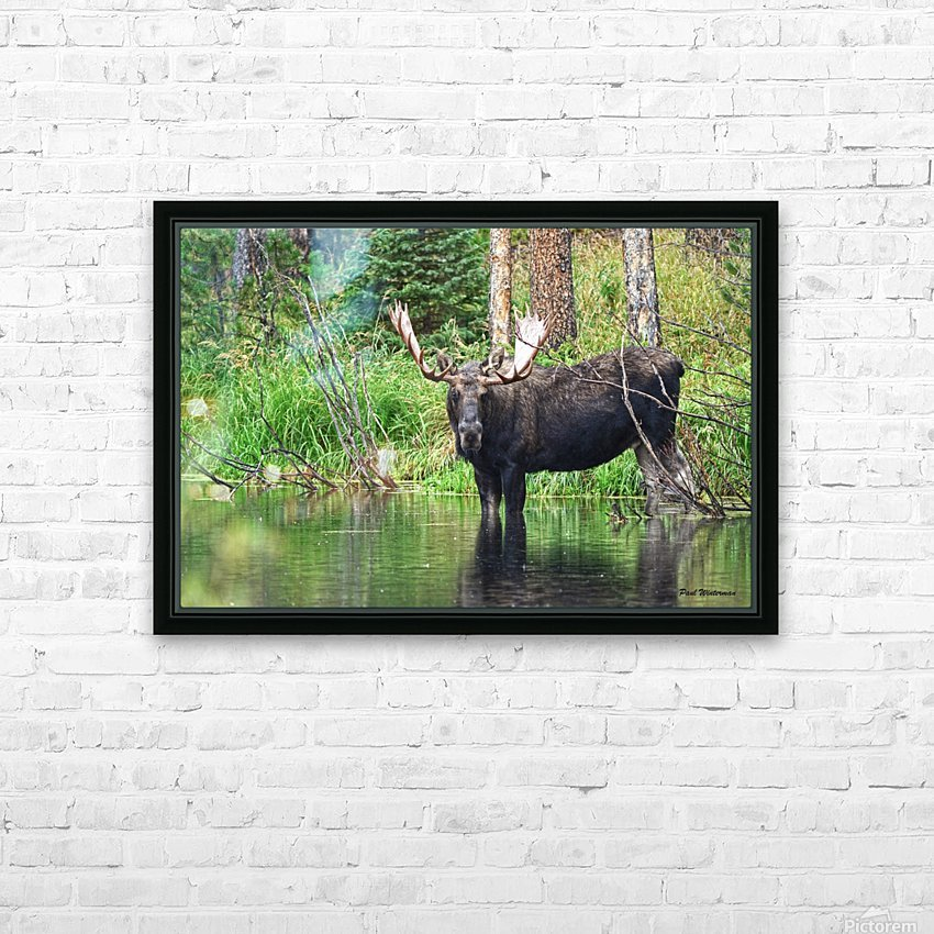 2314- The Look HD Sublimation Metal print with Decorating Float Frame (BOX)