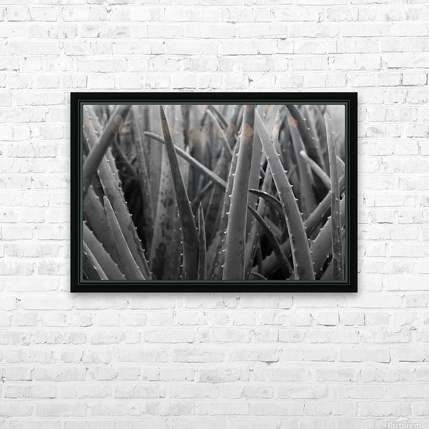 Aloe HD Sublimation Metal print with Decorating Float Frame (BOX)