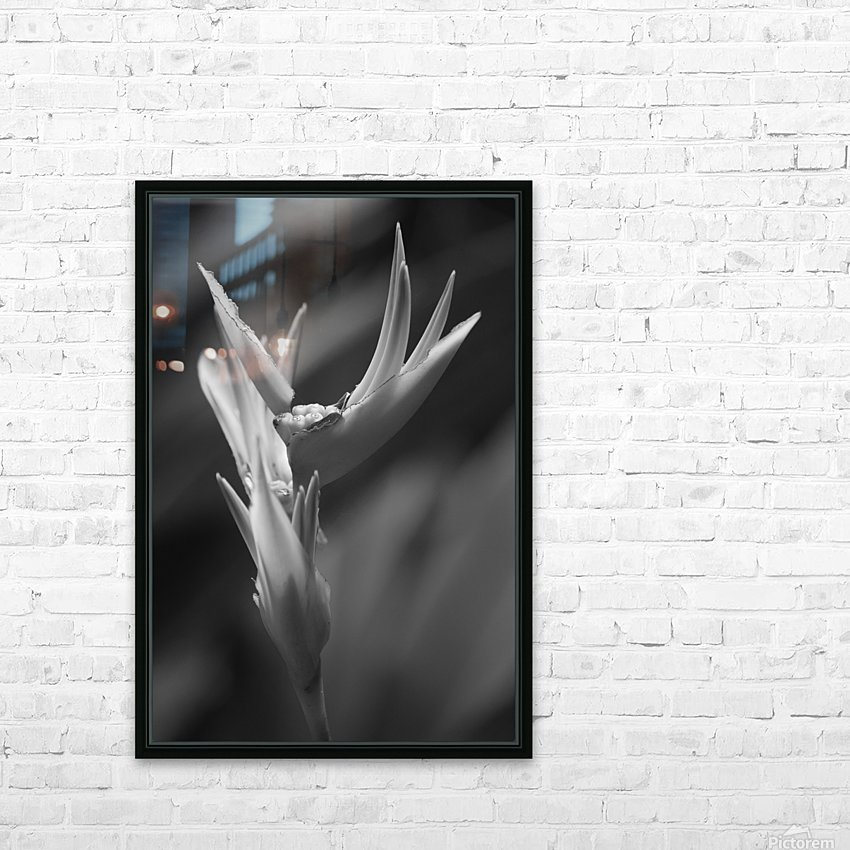 Claw HD Sublimation Metal print with Decorating Float Frame (BOX)