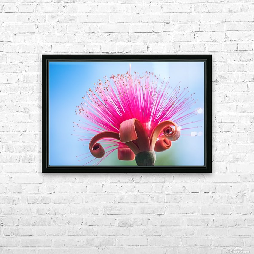 Pinky HD Sublimation Metal print with Decorating Float Frame (BOX)