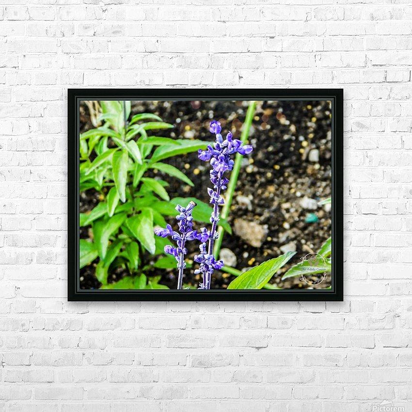 DSCN0817 HD Sublimation Metal print with Decorating Float Frame (BOX)