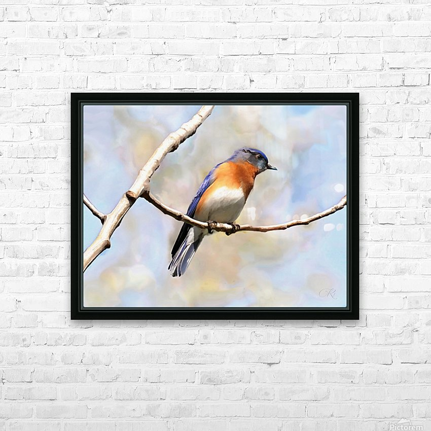 Blue Bird HD Sublimation Metal print with Decorating Float Frame (BOX)