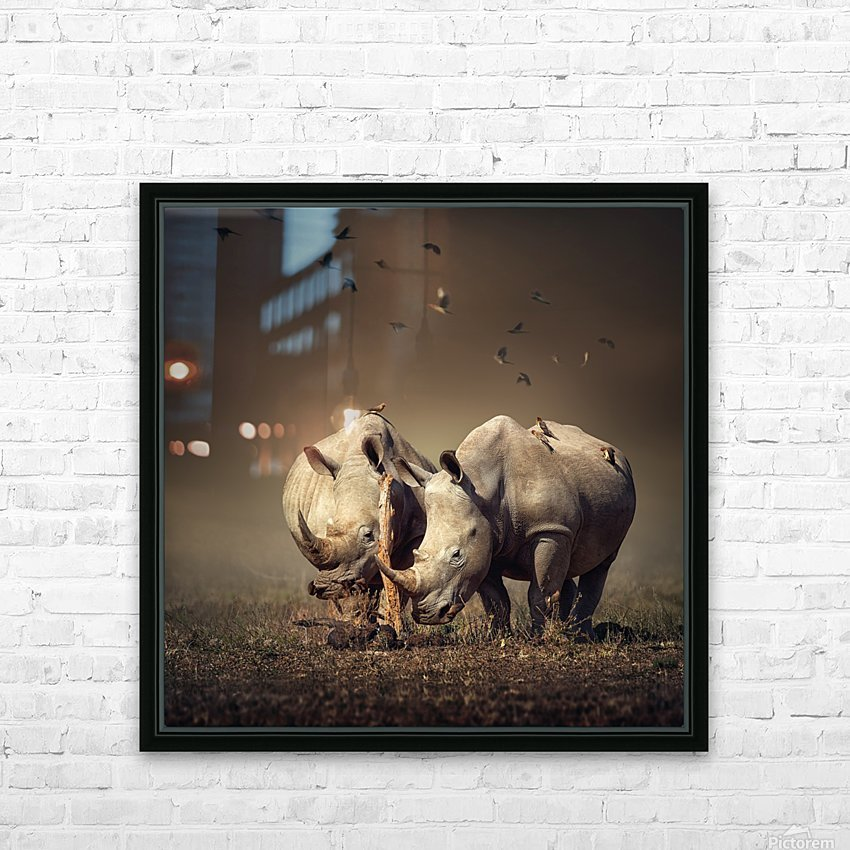 Two Rhinoceros with birds HD Sublimation Metal print with Decorating Float Frame (BOX)