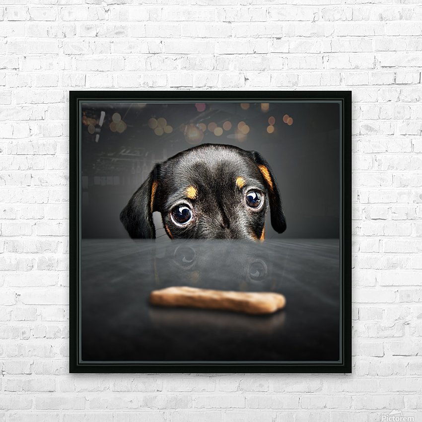 Puppy longing for a treat HD Sublimation Metal print with Decorating Float Frame (BOX)