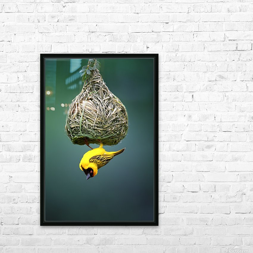 Masked weaver at nest HD Sublimation Metal print with Decorating Float Frame (BOX)