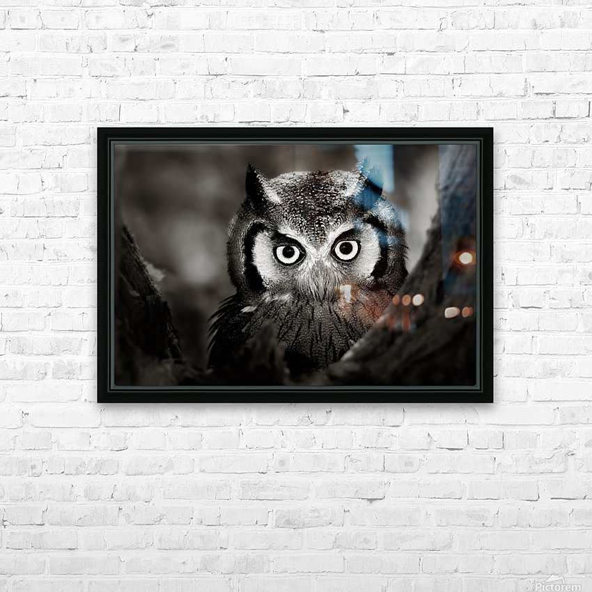 Whitefaced Owl close-up HD Sublimation Metal print with Decorating Float Frame (BOX)