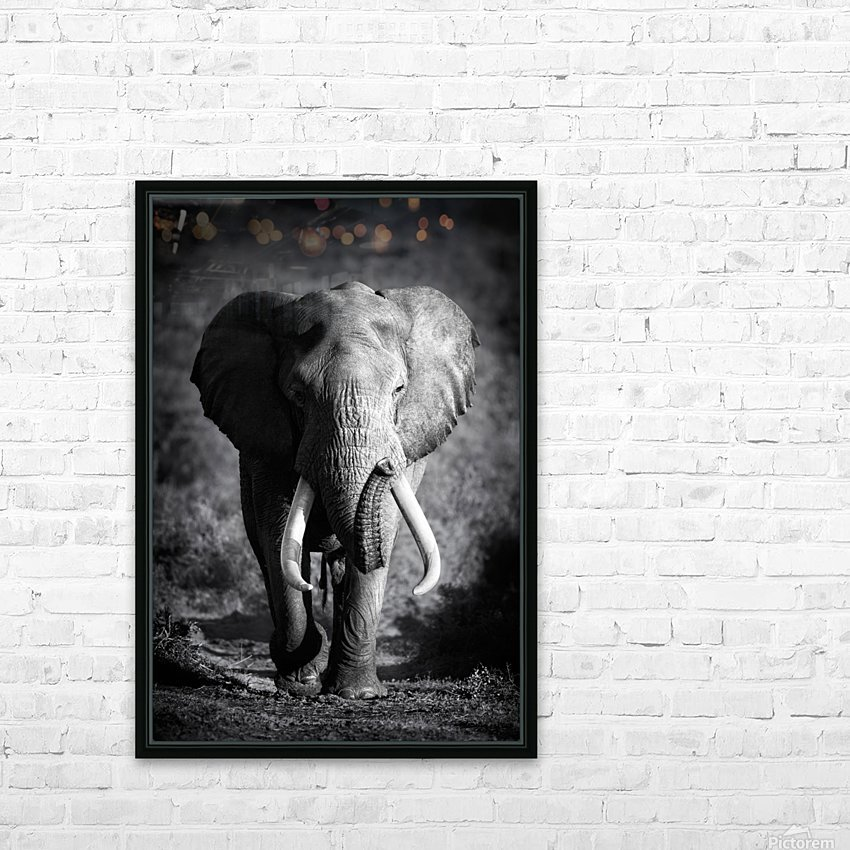 Elephant Bull HD Sublimation Metal print with Decorating Float Frame (BOX)