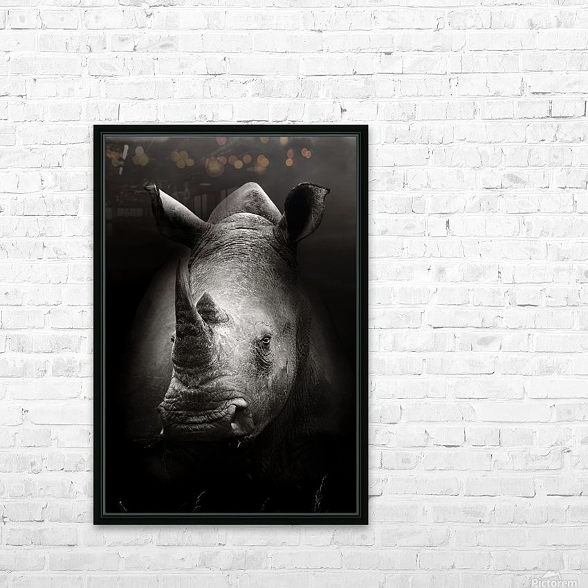 Rhinoceros portrait HD Sublimation Metal print with Decorating Float Frame (BOX)