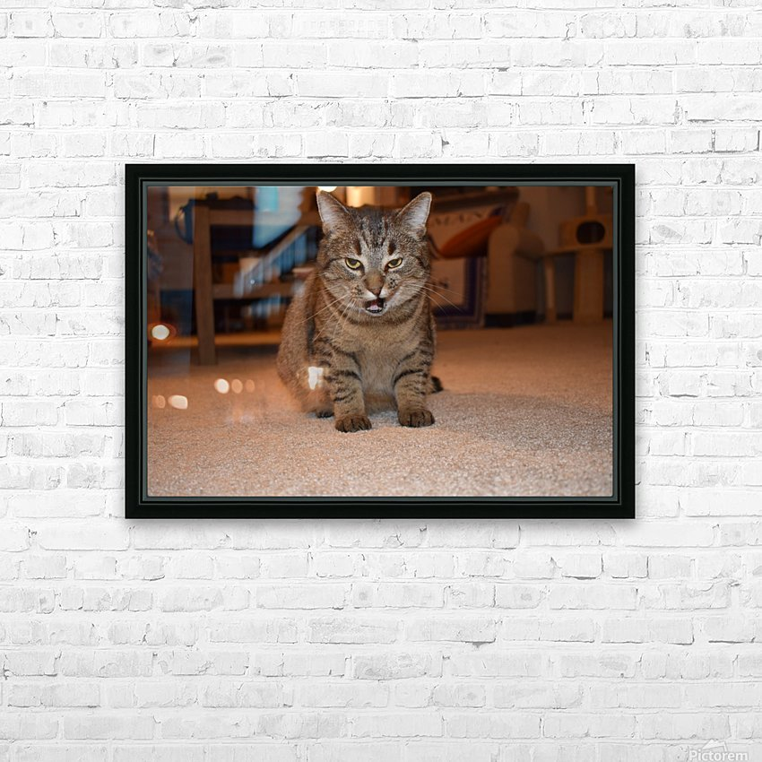 Curious Chloe HD Sublimation Metal print with Decorating Float Frame (BOX)
