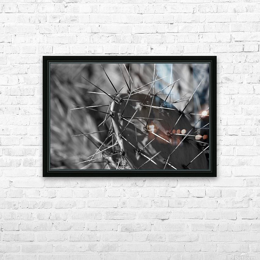 Prickly Pear HD Sublimation Metal print with Decorating Float Frame (BOX)