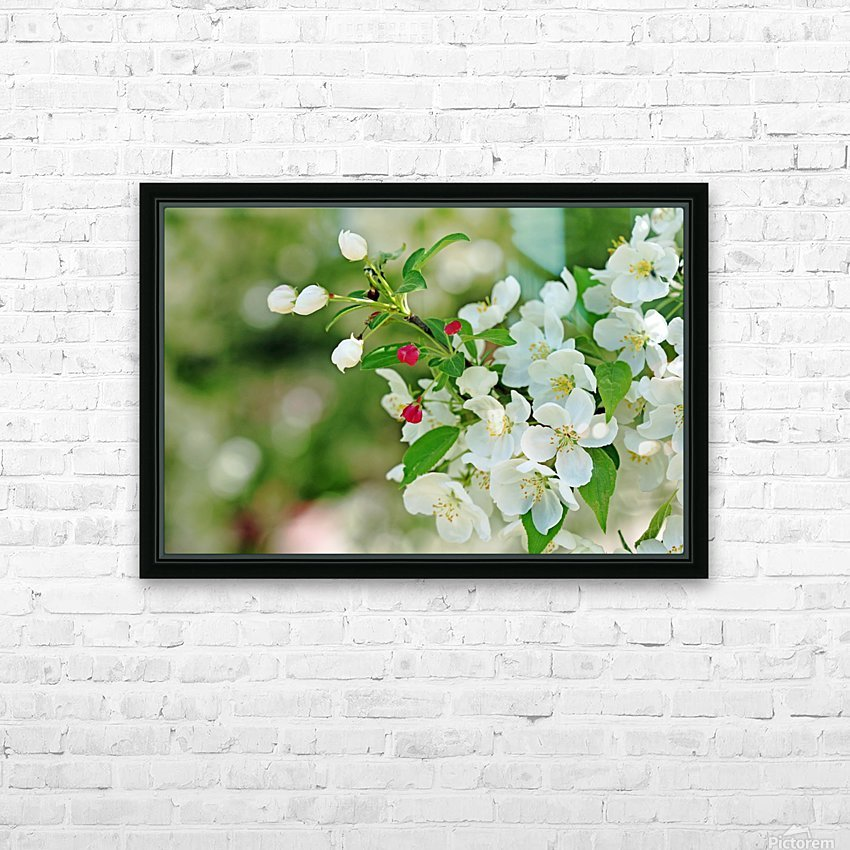 Crabapple Blossoms HD Sublimation Metal print with Decorating Float Frame (BOX)