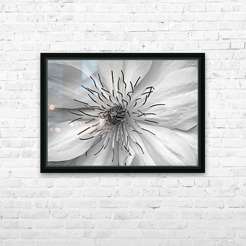 Clematis White HD Sublimation Metal print with Decorating Float Frame (BOX)