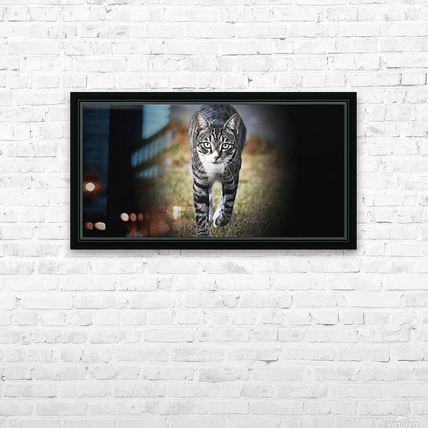 Tiny - walking HD Sublimation Metal print with Decorating Float Frame (BOX)