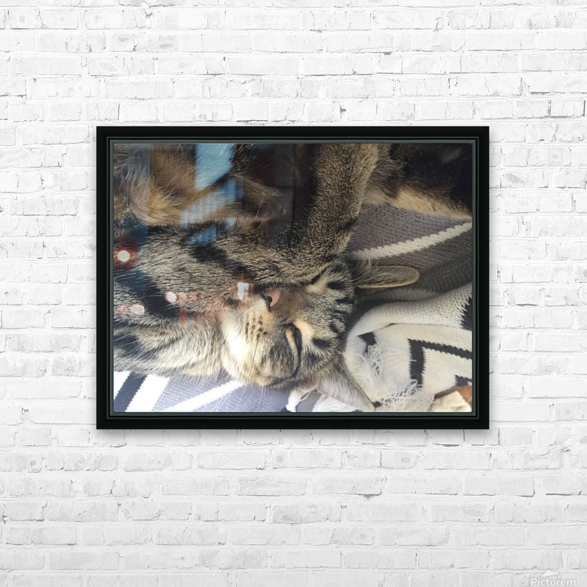 Gizmo - sleepy HD Sublimation Metal print with Decorating Float Frame (BOX)