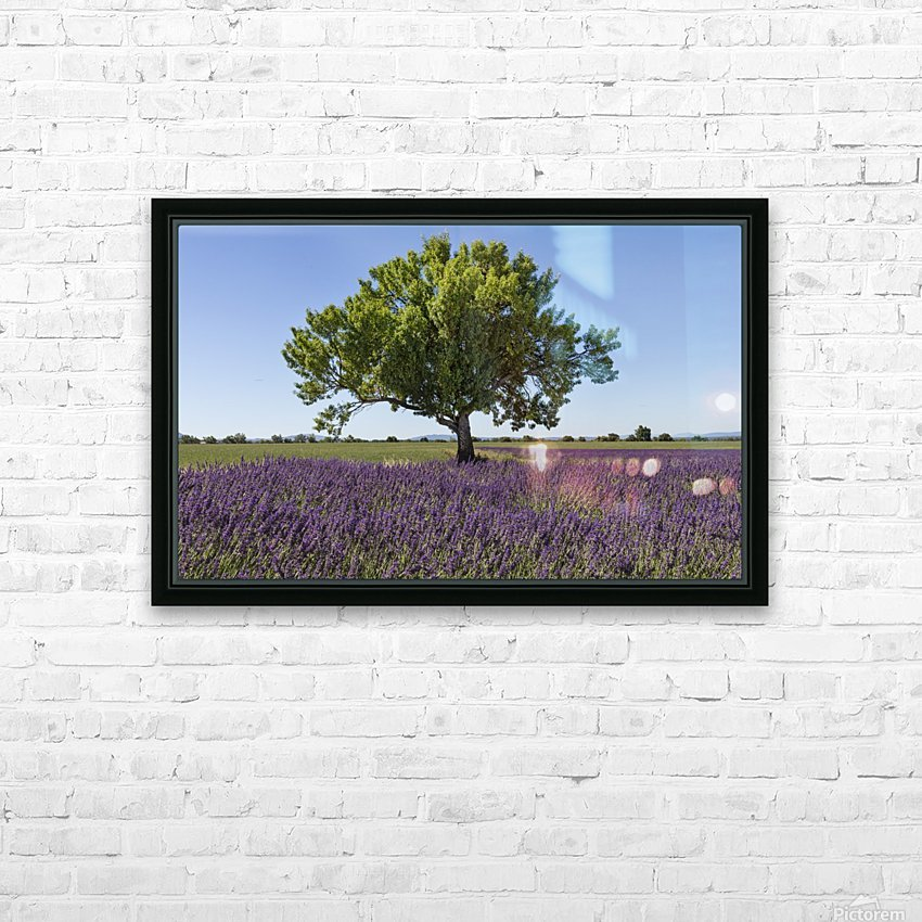 Tree in a lavender field HD Sublimation Metal print with Decorating Float Frame (BOX)