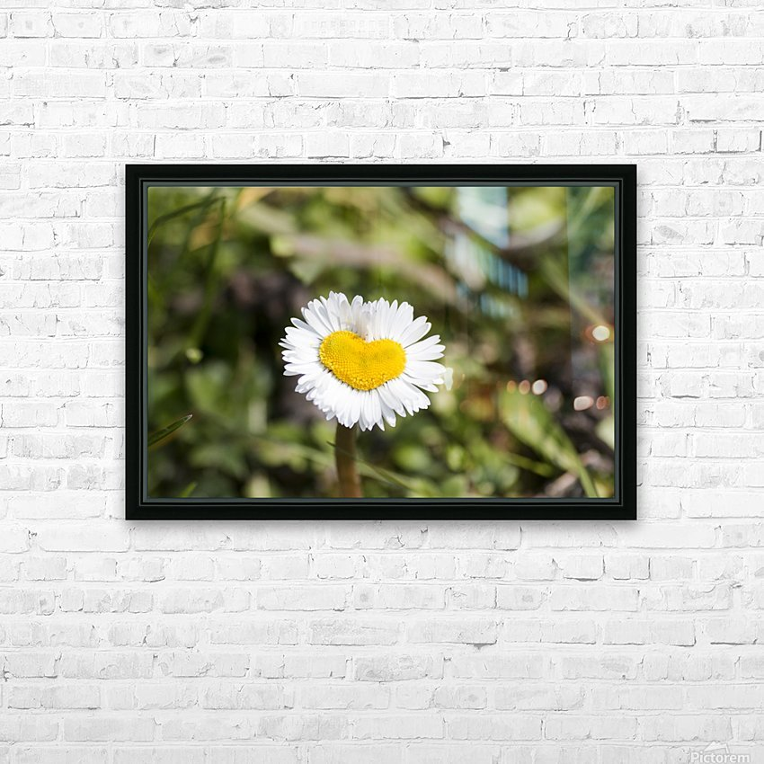 Heart shaped daisy HD Sublimation Metal print with Decorating Float Frame (BOX)