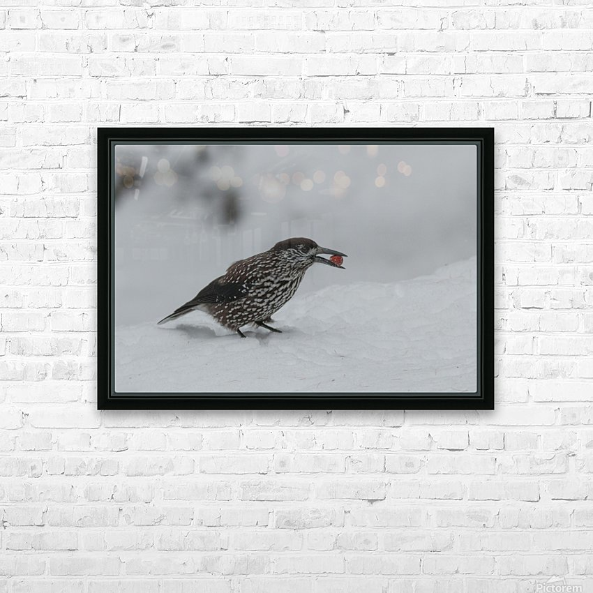 Spotted nutcracker in the snow HD Sublimation Metal print with Decorating Float Frame (BOX)