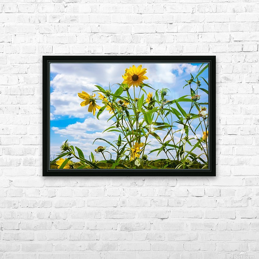 Sunny flower HD Sublimation Metal print with Decorating Float Frame (BOX)