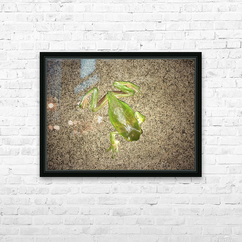 Canopy Dreaming HD Sublimation Metal print with Decorating Float Frame (BOX)