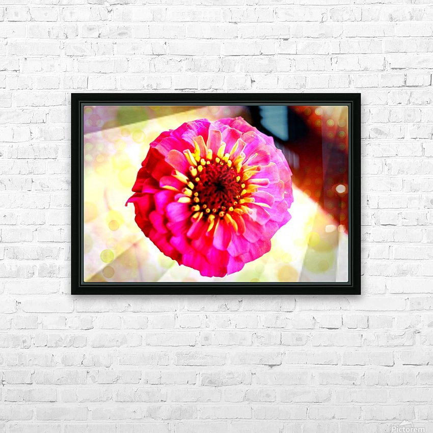 Rainbow daisy HD Sublimation Metal print with Decorating Float Frame (BOX)
