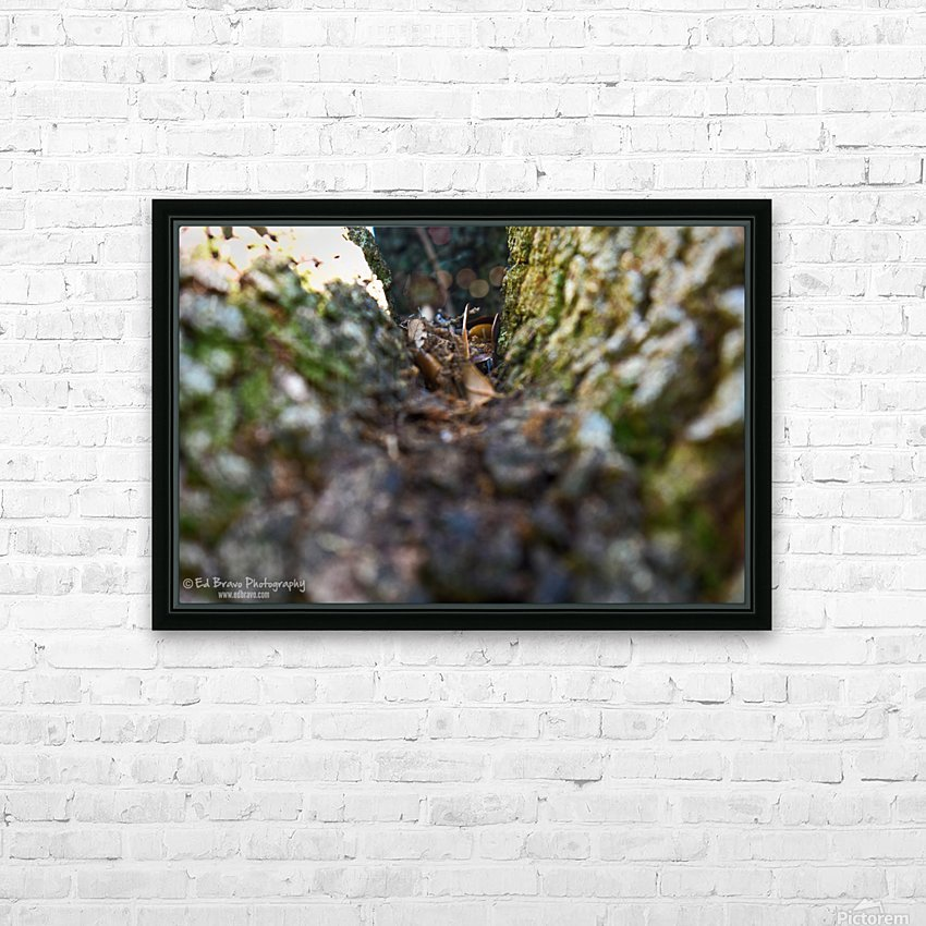 tree path 2 2 HD Sublimation Metal print with Decorating Float Frame (BOX)