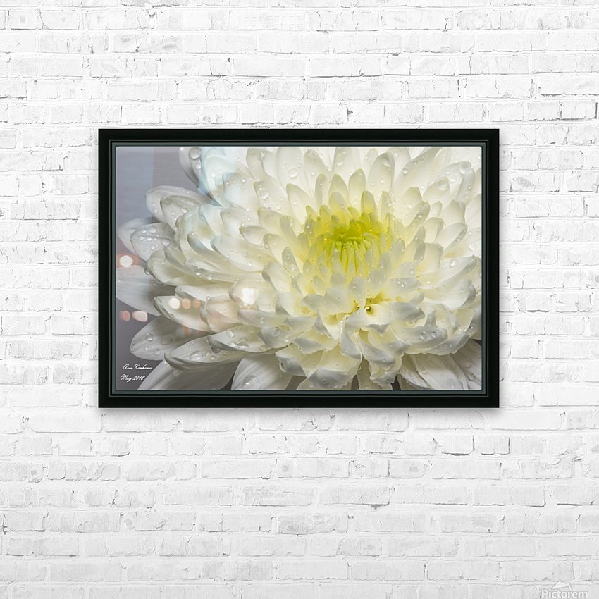 White mum flower with water droplets HD Sublimation Metal print with Decorating Float Frame (BOX)
